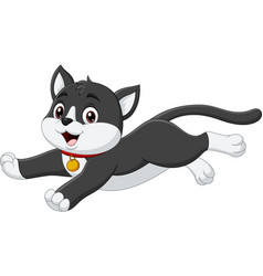 cartoon black and white cat on white background vector image