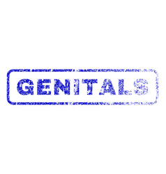 Genitals rubber stamp vector