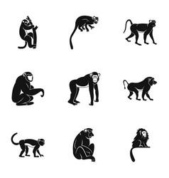jungle monkey icon set simple style vector image