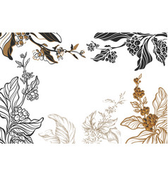 Template coffee branches vector