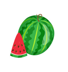 Watermelon sweet fruit sliced exotic berry icon vector