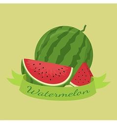 Watermelon Fruit Banner Green vector image vector image