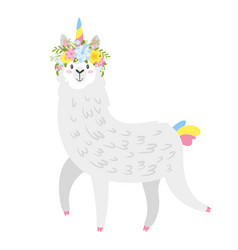 Cute lama alpaca animal vector