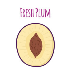 Half of ripe purple plum cartoon flat style vector
