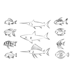 Painted fishes set vector image