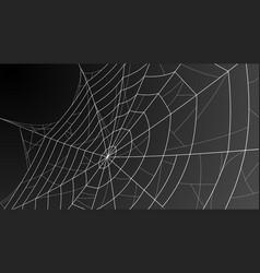 spider web cobweb for halloween vector image