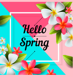 hello spring background with colorful flowers vector image vector image
