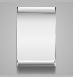 Blanc roll poster template vector