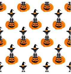 halloween cat on pumpkin seamless pattern vector image