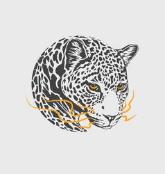 leopard head mascot vector image