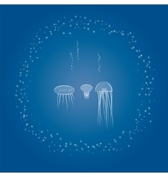 Sea animals jellyfish and sea stars vector