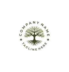 tree life stamp seal emblem oak banyan logo vector image
