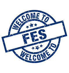 Welcome to fes blue stamp vector