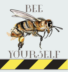 be yourself fashion with bee vector image