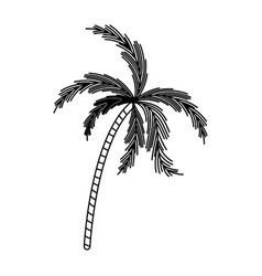 Black silhouette with palm tree vector