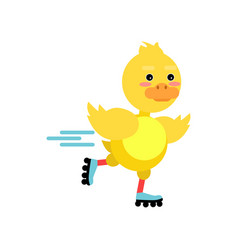 funny little yellow duckling rolling on roller vector image