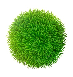 Grassy sphere vector image vector image
