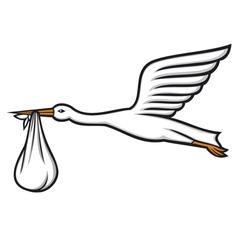 Stork carrying a bain its beak vector