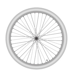 bicycle wheel on white background vector image vector image