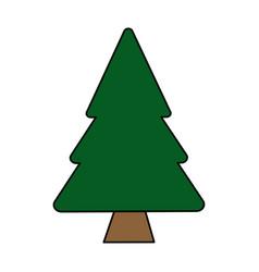 colorful image cartoon pine tree vector image