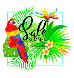summer sale composition with tropical plants and vector image vector image
