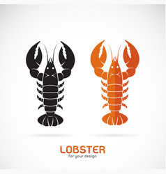 lobster design on white background sea animal vector image vector image