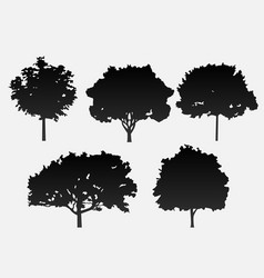 a set of 5 trees in black on a gray backgro vector image