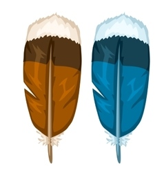 Brown and blue bird feathers isolated vector
