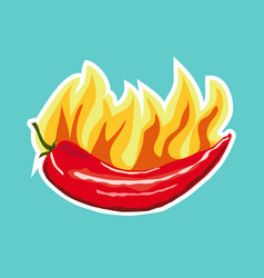 chilli pepper icon sticker flat style vector image