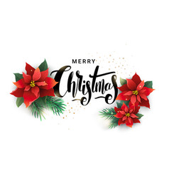 christmas design of poinsettia and fir branches vector image vector image