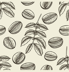 Coffee tree branches vector