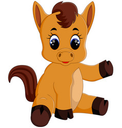 Cute baby horse sitting vector