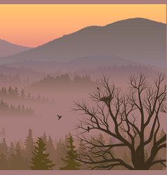 Purple valley with coniferous wood vector