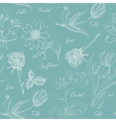 Seamless pattern with flowers iris calla lily vector