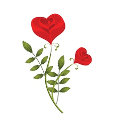 two stylised red roses in the form of heart vector image