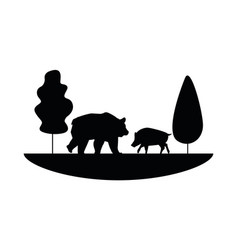 Wild pig and bear beast animals icon vector