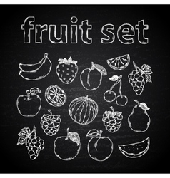 Fruit set on a chalk board vector image