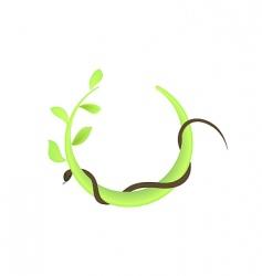 leaf and snake vector image