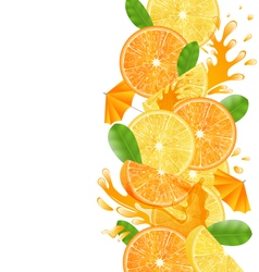 Sliced Oranges and Lemons vector