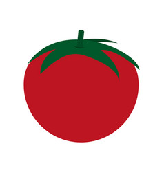 Tomato vegetable icon vector