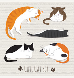 cats sleep collection vector image