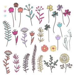 collection with doodle flowers and herbs with vector image