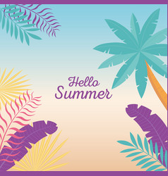 hello summer tropical tree palm leaves foliage vector image