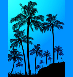 palm trees forest over blue background vector image