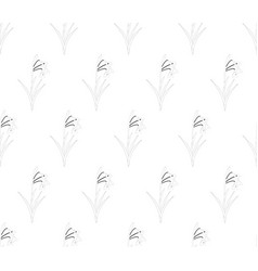snowdrop flower seamless on white background vector image