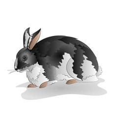 Mottled black and white rabbit isolated vector