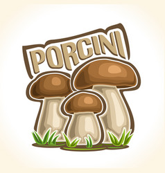Porcini mushrooms vector