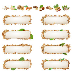 Set banners with different kinds of nuts vector