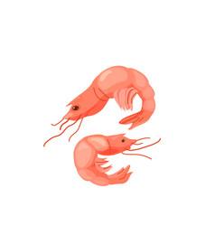 Shrimp prawn seafood in bright color cartoon flat vector