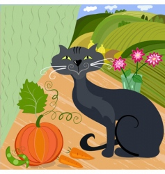 cat and pumpkin vector image vector image